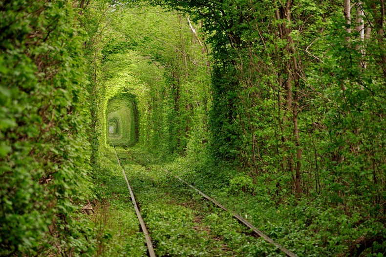 The tunnel of love in Kleven: Ukraine