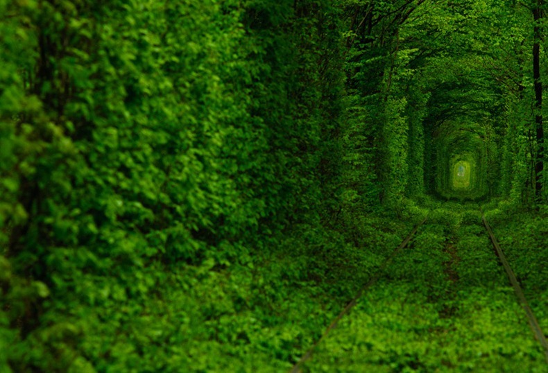 Kleven ( Ukraine ) The Tunnel of Love
