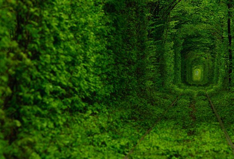 Kleven ( Ukraine ) The Tunnel of Love