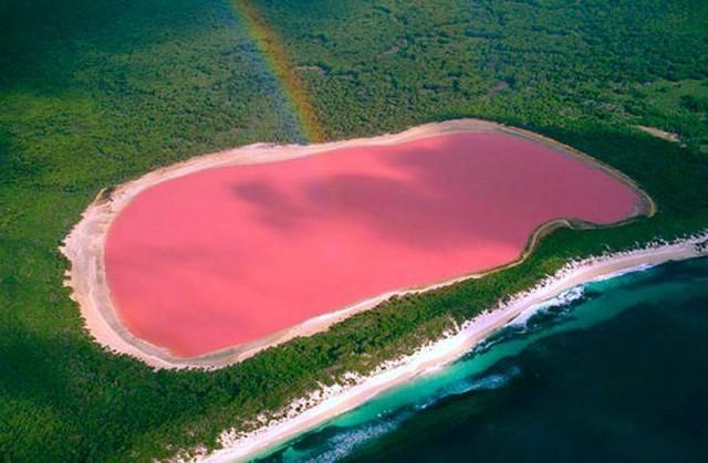 Pink Lake of Western Australia