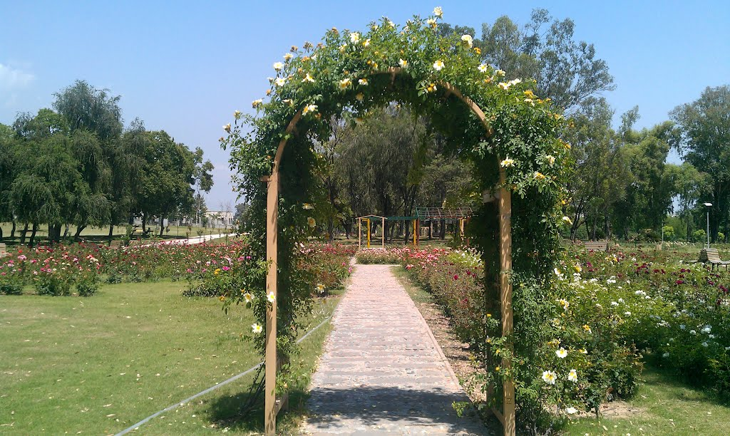 Rose and Jasmine Garden Islamabad - Photo: Raja Mubeen Iqbal