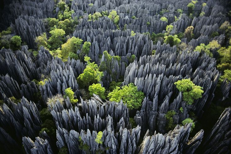 Tsingy de Bemaraha - Stone Forest - Image courtesy : www.traveler.es