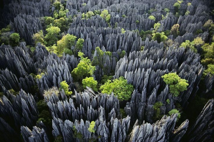 Tsingy de Bemaraha - Stone Forest - Image courtesy : www.traveler.es