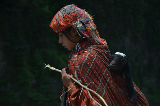 A nomad girl from Neelum Valley, Azad Kashmir. Image by NotMicroButSoft (Happy New Year 2014)