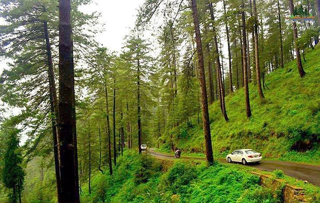 Stunning Thandiani near Abbotabad - Photo credit: Junaid Rao